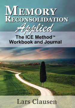 Memory Reconsoidation Workbook